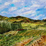 Vineyard Solitude Art Print