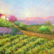 Vineyard Spring Art Print