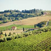 Vineyards With Stone House, Tuscany, Italy Art Print