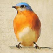 Vintage Bluebird Art Print