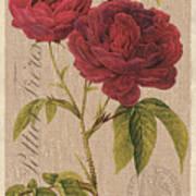 Vintage Burlap Floral 3 Art Print
