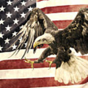 Vintage Flag With Eagle Art Print