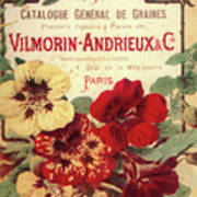 Vintage Flower Seed Cover Paris Rare Art Print