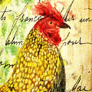 Vintage Rooster Portrait    Art Print