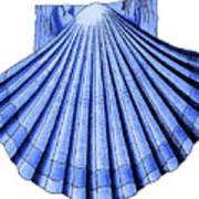 Vintage Scallop Shell Blue Art Print