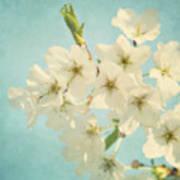 Vintage Spring Blossoms Art Print