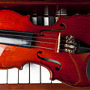 Viola On Piano Keys Art Print by Garry Gay