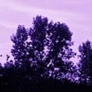 Violet And Black Trees  Art Print