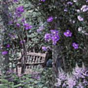 Violet Muted Garden Respite Art Print