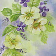 Violets And Wild Roses Art Print