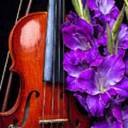 Violin And Purple Glads Art Print by Garry Gay
