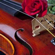 Violin And Red Rose Art Print