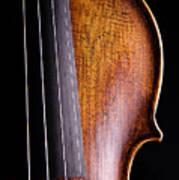 Violin Isolated On Black Art Print