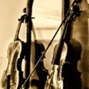 Violins Art Print
