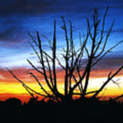 Virden Road Sunset Art Print