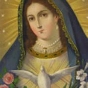 Virgen De La Paloma Art Print