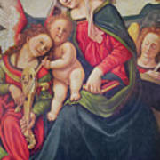 Virgin And Child And Angel Musicians  Art Print by Piero di Cosimo