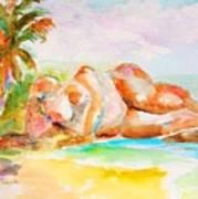 Virgin Cove Art Print