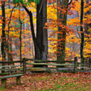 Virginia Country Roads - A Seat With A View - Autumn Colorfest No. 1 Near Mabry Mill - Floyd County Art Print