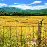 Virginia Fields Of Green Art Print