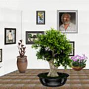 Virtual Exhibition -  Bonsai 13 Art Print