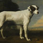 Viscount Gormanston Art Print