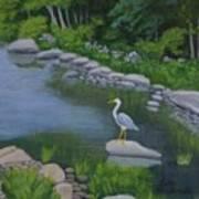 Visiting Heron Art Print