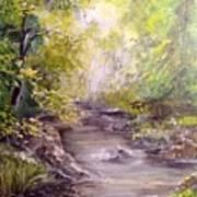Vitsa River Art Print