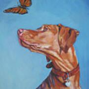 Vizsla And The Butterfly Art Print