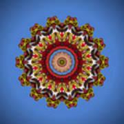 Voladores Kaleidoscope 3 Art Print