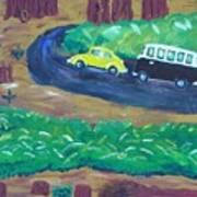 Vws In The Redwoods Art Print