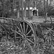 Wagon In The Woods Art Print
