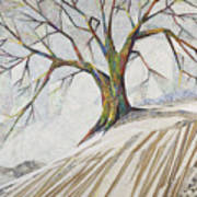 Waiting Out Winter Art Print