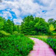 Walk Into Beauty Shaw's Nature Reserve Wet Lands Art Print