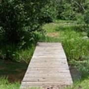 Walking Bridge Over River Art Print