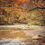 Walnut Creek In Autumn Art Print