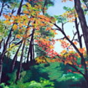 Wandering Through The Woods Art Print
