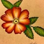 Warm Flower Art Print