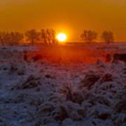 Warm Sunrise In Winter Art Print