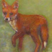 Wary Fox Cub Art Print