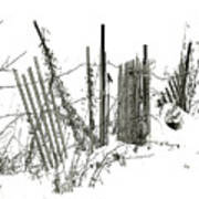 Was Once A Fence... Now Retired Art Print