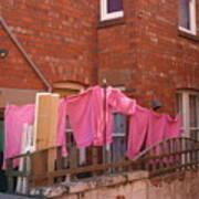 Wash Day Pinks Art Print
