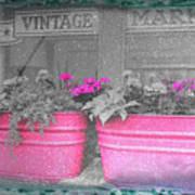 Wash Tub Planters Art Print
