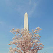 Washington Mounument Art Print