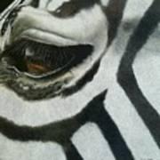 Watchful Eye  Art Print