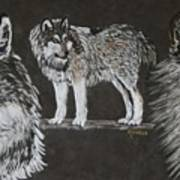 Watchful Eyes Art Print
