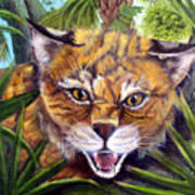 Watching  Florida Bobcat Art Print