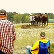 Watching The Man Work The Field Art Print