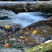 Water Falls Art Print