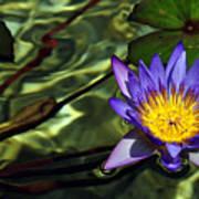 Water Floral Art Print